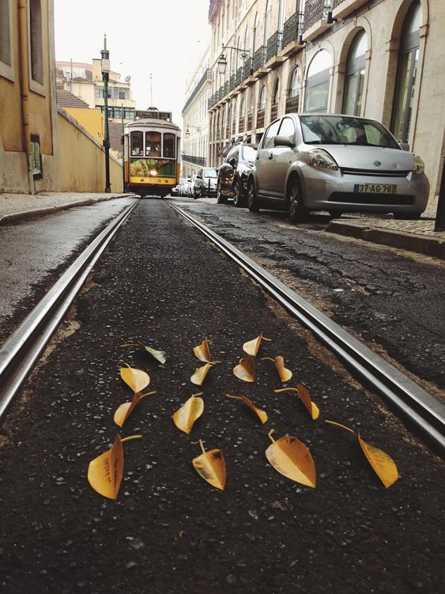 """""""Banana Leaves,"""" Kenzie Allen. Lisbon, 2013."""